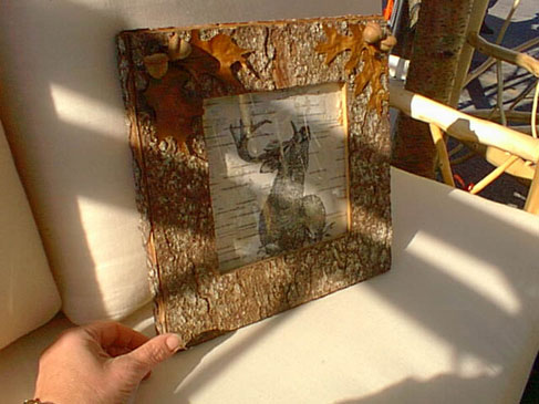 Wildlife Art - Frame and Deer